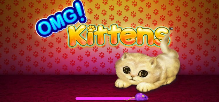 Review & Tips on Playing Latest OMG Kittens Slot